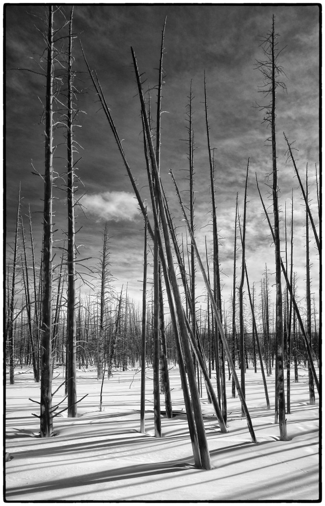 Yellowstone_SW_XEIR1082-Edit