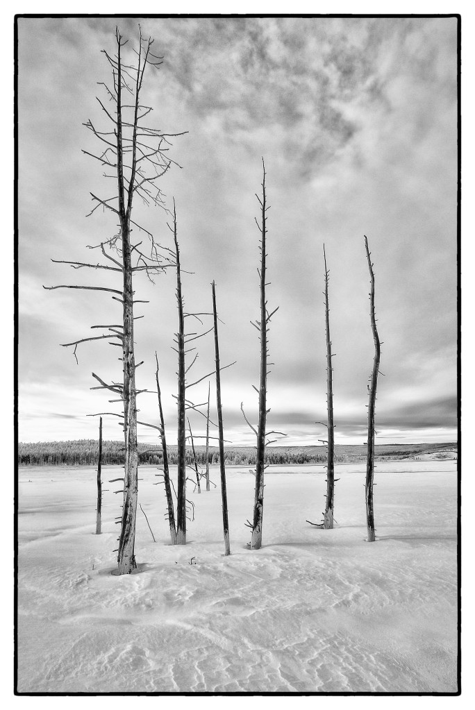Yellowstone_SW_XEIR1127-Edit-Edit-Edit