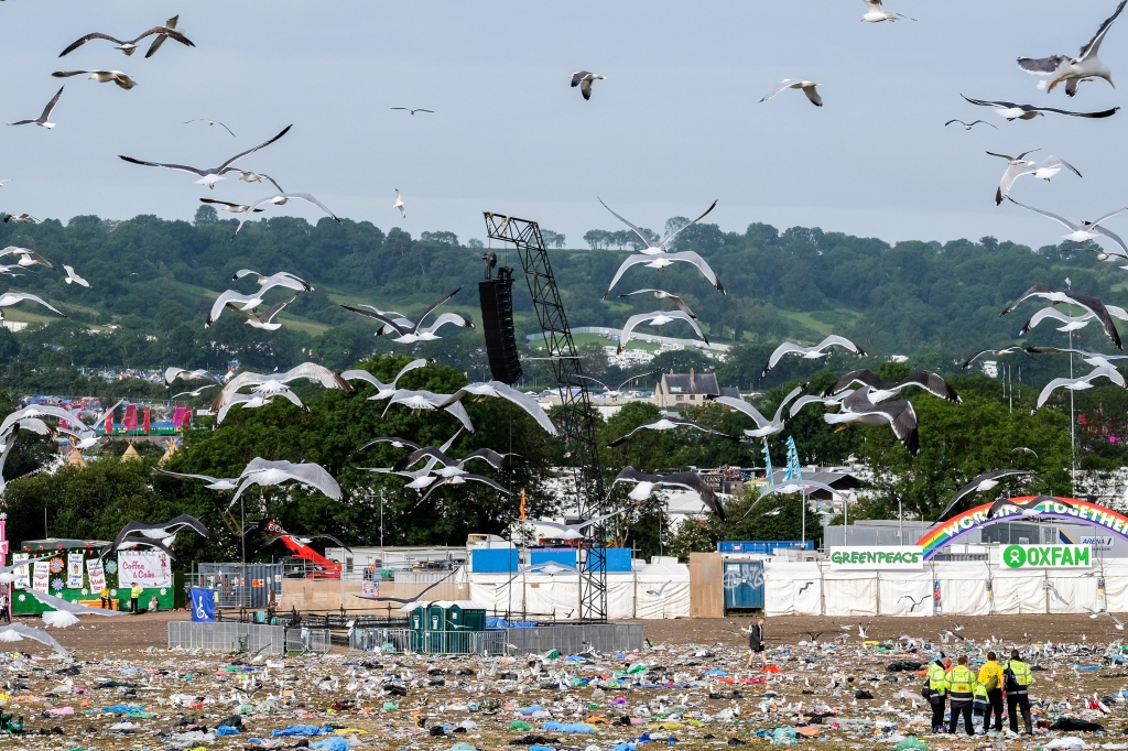 Glastonbury Festival, Somerset, UK. 29 June 2015. As the festival goers leave the site seagulls move in for the pickings. © Tom Corban