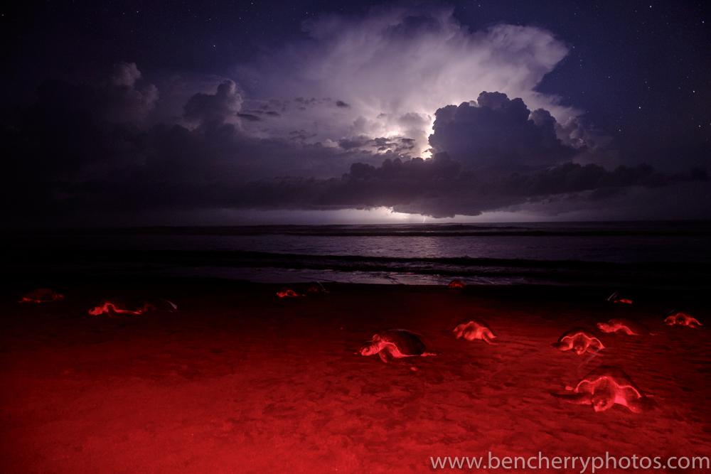 Ben Cherry Lightning-9
