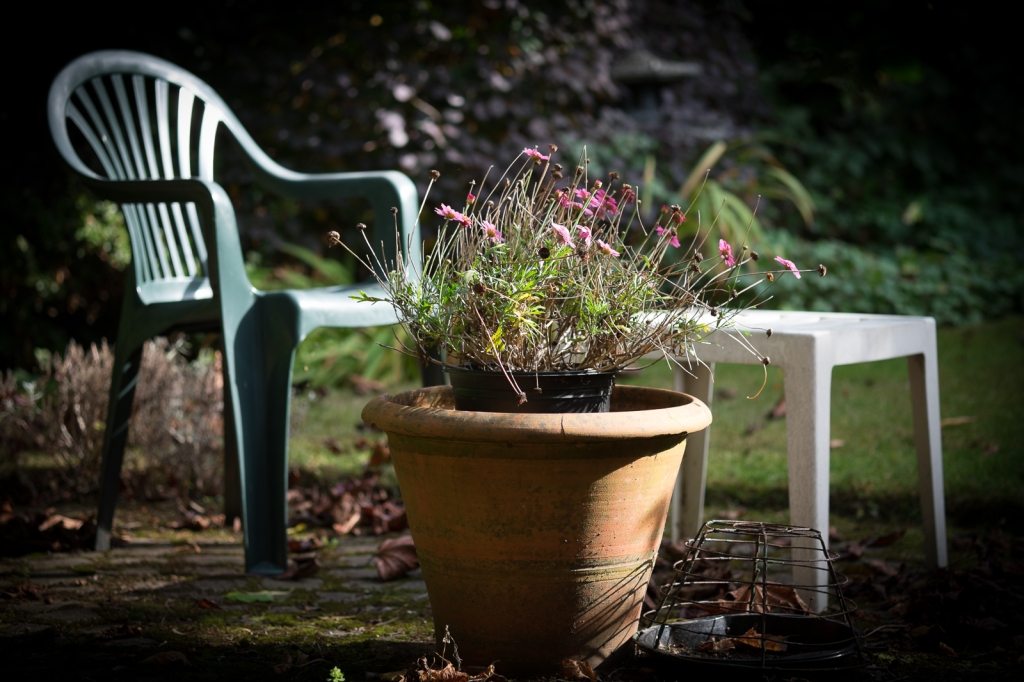 Garden furniture. 1/500sec at f/2.4, ISO 200