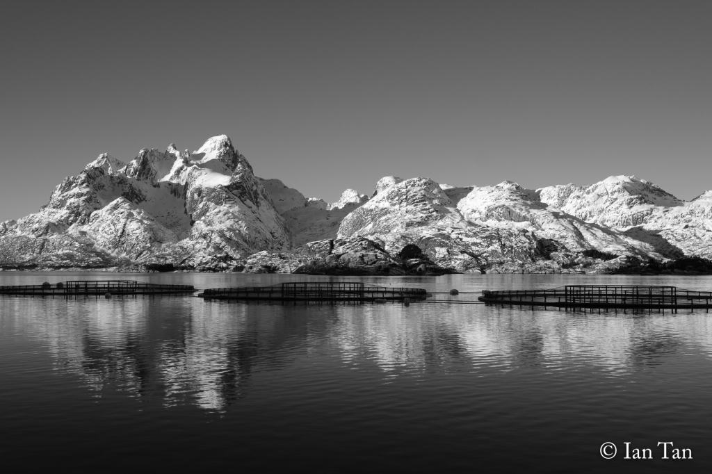 7_mountainfjordreflections